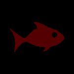fish - large distressed